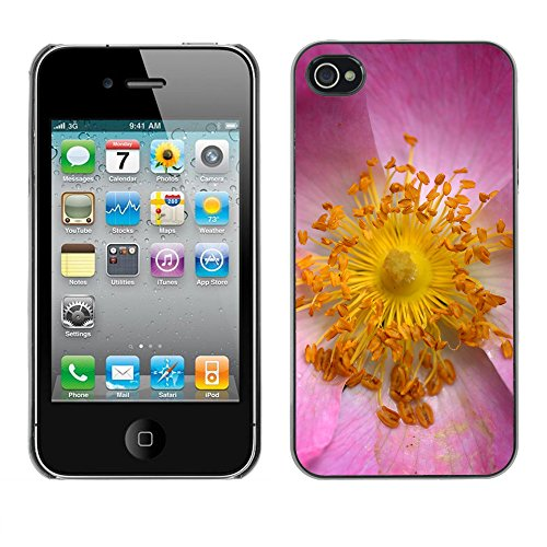 Premio Sottile Slim Cassa Custodia Case Cover Shell // F00020569 noyau de fleurs // Apple iPhone 4 4S 4G
