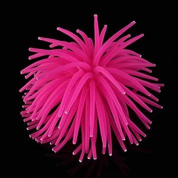 Coral Plástico Artificial Decoración para Acuario Pecera Peces Rosa Oscura: Amazon.es: Hogar