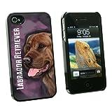 graphics and more Chocolate Labrador Retriever rosa–perro mascota–Snap On carcasa rígida para Apple Iphone 44S–negro–Funda de transporte–empaquetado, color negro