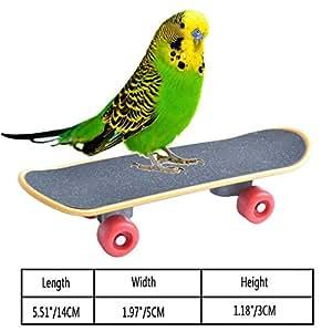 Amazon.com: Viet-GT Juguetes para pájaros – Juguetes de ...