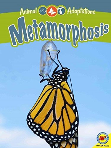 Metamorphosis (Animal Adaptations) pdf
