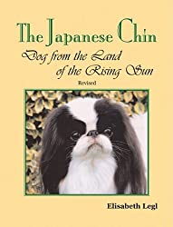 The Japanese Chin: Dog from the Land of the Rising Sun
