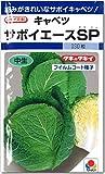 サボイキャベツ 種子 サボイエースSP キャベツ (180粒)