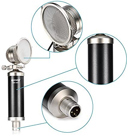 Neewer NW-860 Professional Studio Broadcasting /& Recording Microphone Set: Shock Mount + Pop Filter + Microphone Power Cable + 1 Condenser Microphone + 1 1 1 Protective Carrying Case 1