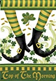 Irish Jig St. Patrick's Day Dancing Leprachaun Boots 28″ x 40″ Decorative Outdoor House Flag For Sale