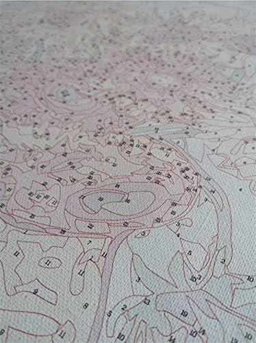 MEEKIS Malen nach Zahlen Japan kirschbl/üte Tempel DIY Moderne wandkunst Bild f/ür wohnkultur Erwachsene 40x50cm-No Frame
