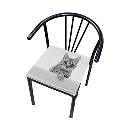 Bardic FICOO Home Patio Chair Cushion Cute Animal Kitten Square Cushion Non-Slip Memory Foam Outdoor Seat Cushion, 16x16 Inch: Home & Kitchen