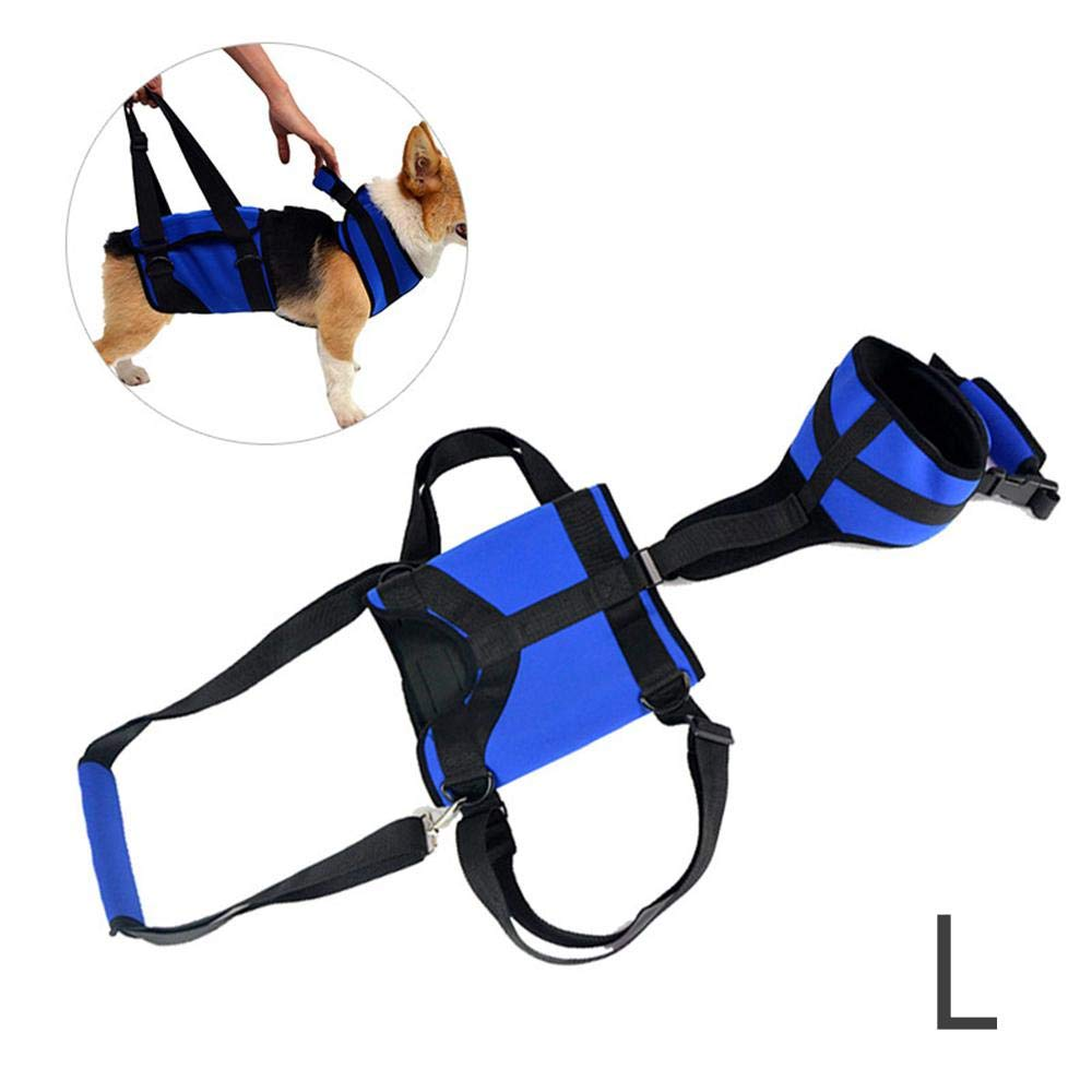 L Dog Lift Harness, MOGOI Pet Support & Rehabilitation Sling Lift Adjustable Vest Breathable Straps for Old, Disabled, Joint Injuries, Arthritis, Loss of Stability Dogs Walk