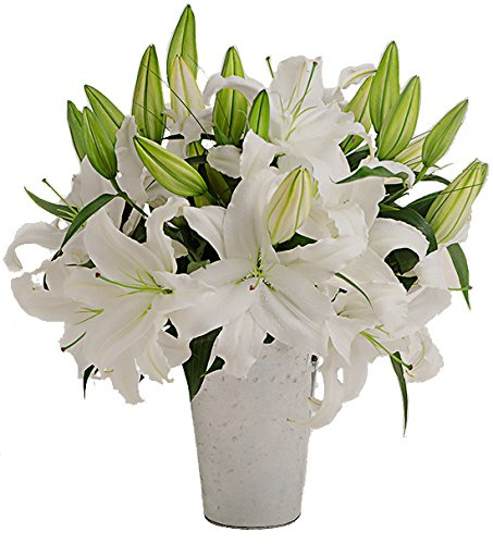 Amazon Stargazer Barn Farm Fresh Bouquet Of White Lilies