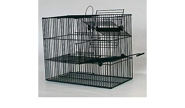 FINCA CASAREJO Jaula Trampa para pájaros. Jaula Captura pájaros y ...