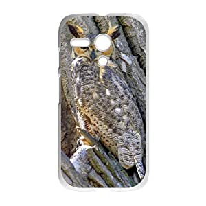 Camo Tree Hybrid Shockproof Protective &Cute Owl Bird Tree Custom Case for Motorola G