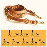 Leather 6' Multi-Function Leather Leash by Bold Lead Designs (X-Large)
