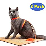 Avolare Cat Harness Adjustable Nylon Strap Collar - 2/Pack
