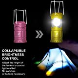 MalloMe LED Camping Lantern Flashlights For Backpacking & Camping Equipment Lights - Best Gift Ideas, Pack of 2 (6 AA Batteries Included)