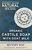 ALL NATURAL CASTILE SOAP BAR – Mutiny Bay (Lavender & Bergamot) by WINatural | Gentle moisturizing natural soap| Handmade in small batches (4.2 Oz Mutiny Bay (6 Bar Pack)) For Sale