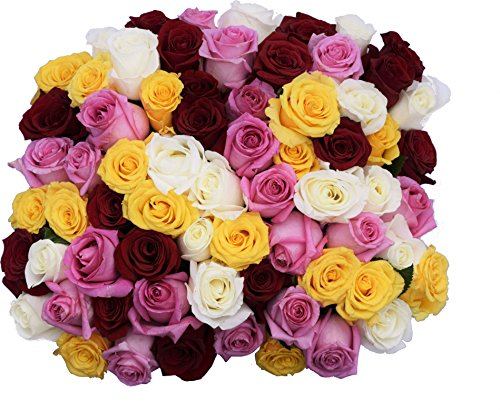 50 Farm Fresh Farmers Choice Roses Bouquet By JustFreshRoses | Long Stem Fresh Farmers Choice Rose Delivery | Farm Fresh Flowers