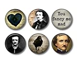 Edgar Allan Poe - Fridge Magnets - Crow Magnets - 6 Magnets - 1.5 Inch Magnets - Kitchen Magnets