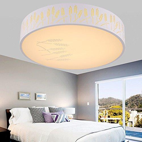 SSBY Modernes, minimalistisches LED Deckenleuchte runde Schlafzimmer Wohnzimmer lampe licht und kreative persönlichkeit Studie Esszimmer Balkon leuchten Nordic , warmes Licht , Durchmesser 40cm
