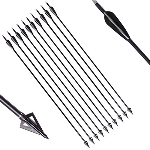 PG1ARCHERY 30 Inch Fiberglass Hunting Arrows, 10 Pack Archery Targeting Practice Arrow with Removable Broadheads Points Fletching 3