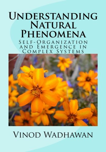Understanding Natural Phenomena: Self-Organization and Emergence in Complex Systems ebook