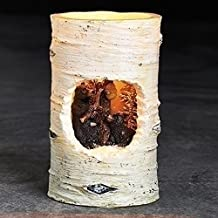 """5"""" Winter Wonderland Black Bear Birch Distressed Battery Operated Flameless LED Candle"""