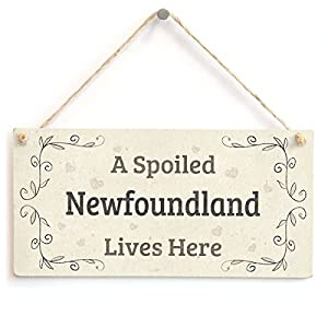 "Meijiafei A Spoiled Newfoundland Lives Here - Beautiful Stylish Home Accessory Novelty Gift Sign for Newfoundland Dog Owners 10""x5"" 11"