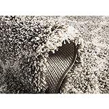 Safavieh Hudson Shag Collection SGH282B Grey and