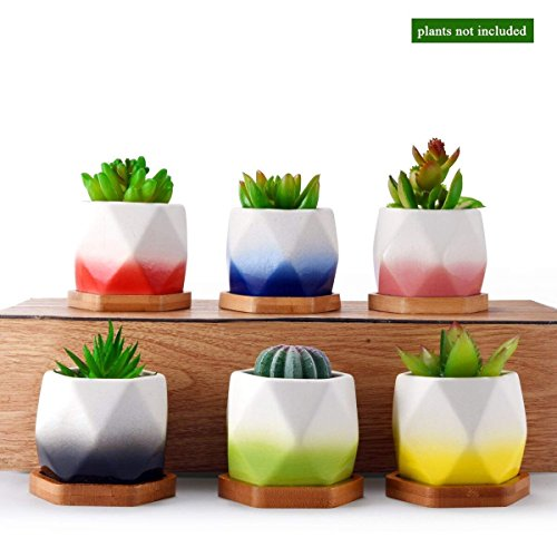 HomeNote Ceramic Planter Garden Pots by HomeNote