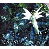 WONDER MUSEUM / Little Seraph