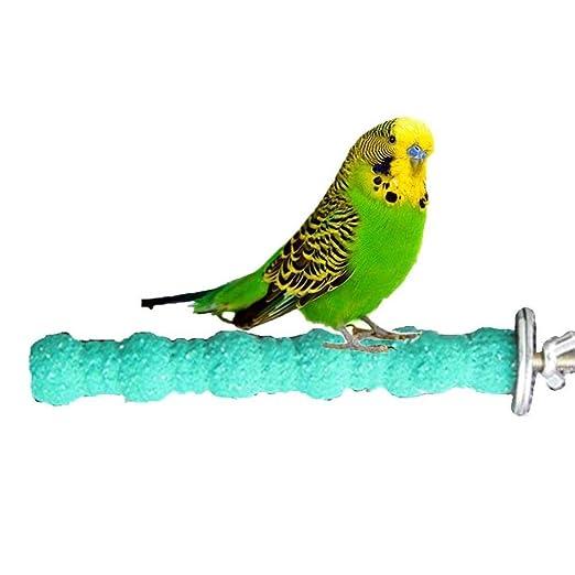 Uteruik - Juguete de Madera para amolar Las Patas de pájaros ...
