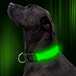 LED Dog Collar Rechargeable Adjustable Nylon Flashing Light Up Collar with Plastic Buckle D-ring, Safety Reflective Dog Collar for Dog Walking, Glowing Dog Collar Dark Visible Safe(Green, Small)