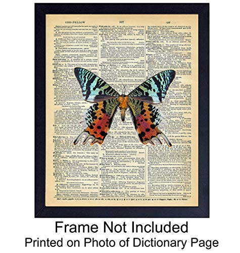 Upcycled Dictionary Wall Art Print - 8x10 Vintage Unframed Photo - Great For Home Decor and Easy Gift Giving - Colorful Butterfly