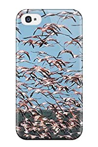 High Quality Free Bird Pic Case For Iphone 4/4s / Perfect Case