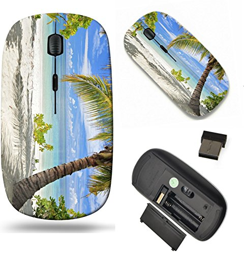 (MSD Wireless Mouse Travel 2.4G Wireless Mice with USB Receiver, Noiseless and Silent Click with 1000 DPI for notebook, pc, laptop, computer, mac book design: 13612885 A scene of palm trees and sandy b)