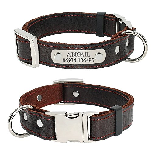 Didog Soft Genuine Leather Plain Custom Dog Collar with Engrave Nameplate ID Tag,Personalized Leather Pet Collars for Small Medium Dogs,XS Size (Leather Nameplate)