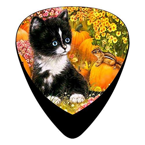 Celluloid Guitar Picks Holders Plectrum For Bass Guitar,Best for sale  Delivered anywhere in USA