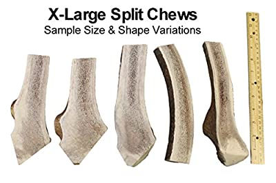 X Large, Split, Single Pack - Grade A Premium Elk Antler Chew for 50+ lb Dogs - Naturally shed from Wild elk - No Mess, No Odor - Made in The USA by Elkhorn Premium Chews