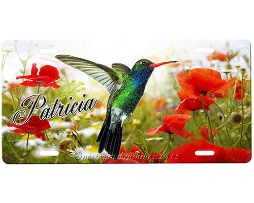 Hummingbird Metal License Plates Signs for Car Decoration 12 Inch X 6 Inch Yohoba