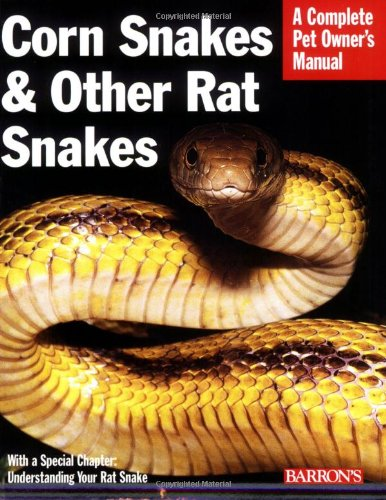 Corn Snakes & Other Rat Snakes (Complete Pet Owner
