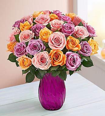 1800Flowers Sorbet Roses Fresh Flower Bouquet with Purple Vase (36 Flowers) ()