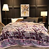 YUMUO Flannel Blanket, Ultra-Soft Plush Twin Size All Season Light Weight Blanket,Wrinkle-Resistant Blanket for Home Bedroom-g (71x87inch) 9lb