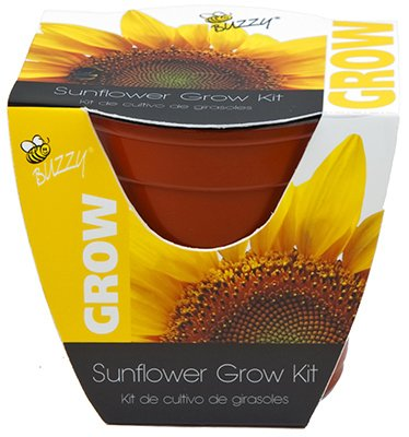Buzzy 95532 4 In Sunflower Plastic Grow Buy Online In Grenada At Desertcart
