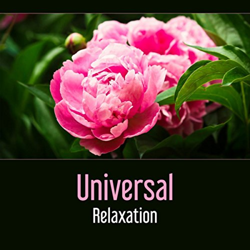 Universal Relaxation