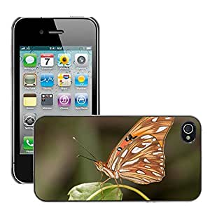 Cas Coq Case Cover // M00106254 Agraulis Vanillae Insecto Mariposa // Apple iPhone 4 4S 4G