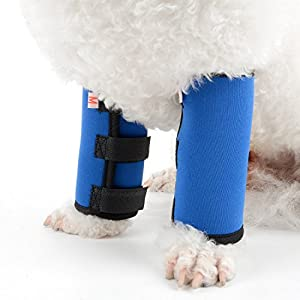 ZUNEA Dog Canine Wrap Protective Brace for Front Leg 2Pack Pet Paw Compression Sleeve Protector Adjustable Wrist Support… Click on image for further info.