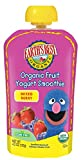 Earth's Best Organic Sesame Street Toddler Fruit Yogurt Smoothie, Mixed Berry, 4.2 oz. Pouch (Pack of 12)
