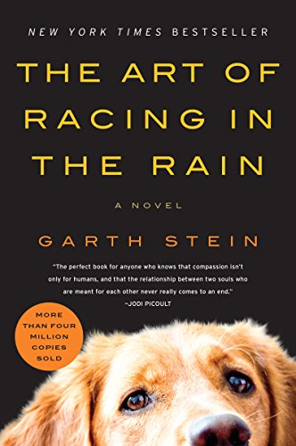 The Art of Racing in the Rain: A Novel (The Best Way To Learn C)