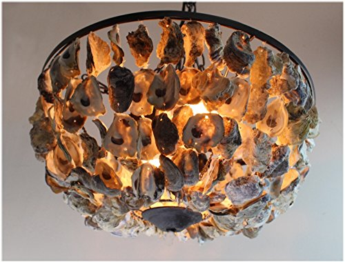 Oyster-Shell-Pendant-Round-Chandelier-Hand-Made-Nautical-Beach-Home-Light-Fixture
