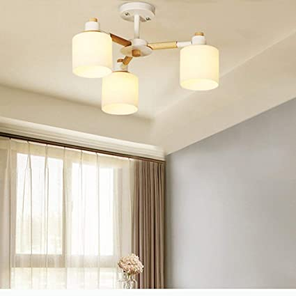 Amazon.com: PLLP - Lámpara de techo para salón o dormitorio ...
