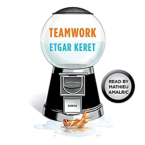 Teamwork Audiobook
